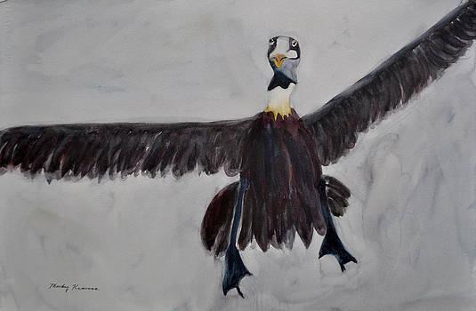 Goofy Pelican by Mickey Krause