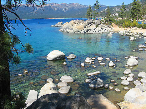 Gorgeous Lake Tahoe by Leontine Vandermeer