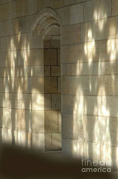 Gothic Wall by Amy Snyder