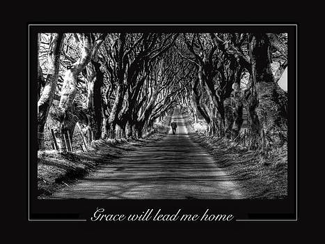Grace will lead me home by David McFarland