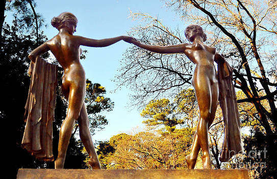 Graceful Dancers by Shirley  Taylor