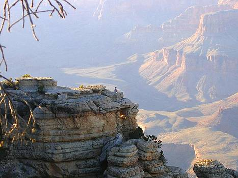 Grand Canyon 38 by Will Borden