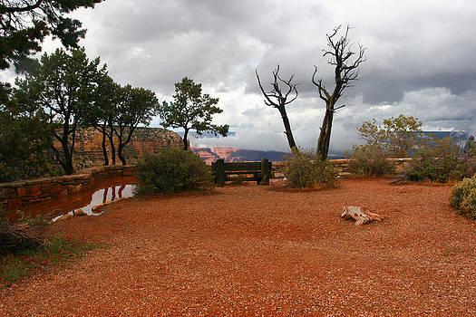 Grand Canyon by Elena Ingram