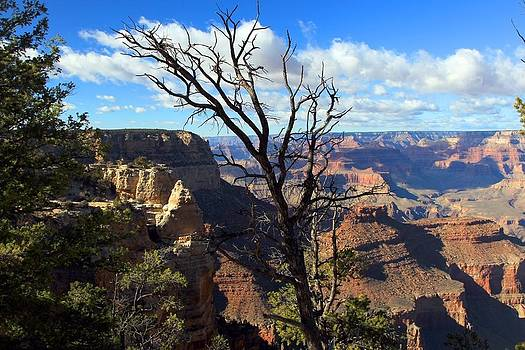 Grand Canyon Hues by Gordon Donovan