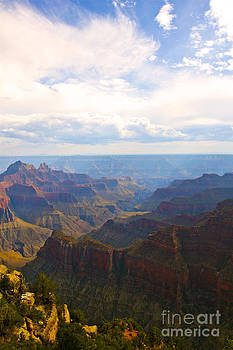 Grand Canyon North Rim 3 by Bianca Collins