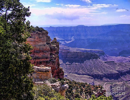 Diana Cox - Grand Canyon View