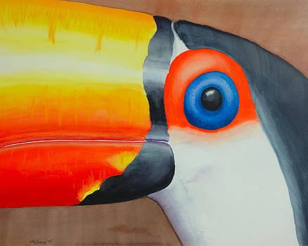 GrandPa Toucan by John  Sweeney
