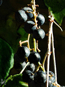 Grapes by Mamie Thornbrue