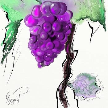 Grapevine by Georgia Pistolis