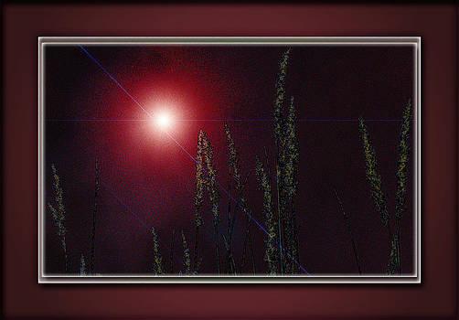 Grass in Grace by Ramani K