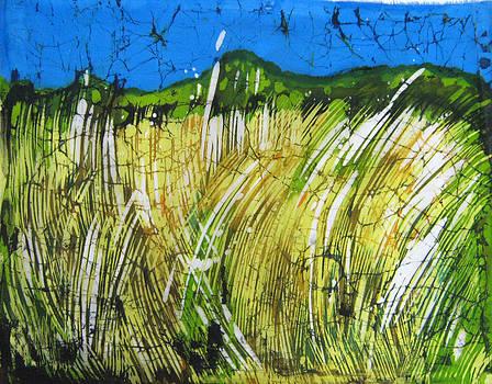 Grass by Nadejda Lilova