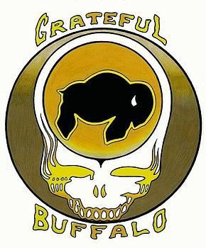 Grateful Buffalo White by Steve Weber