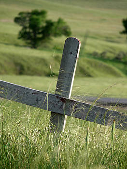 Terry Eve Tanner - Grave at Wounded Knee