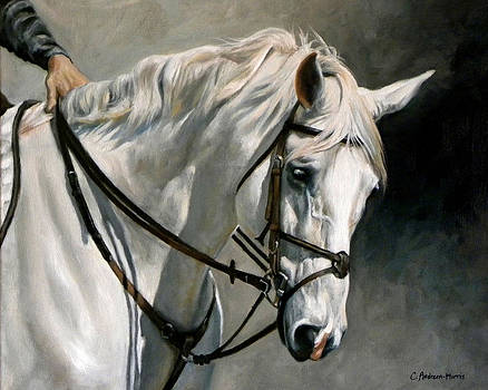Gray by Carole Andreen-Harris