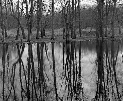 Michael Peychich - Gray Day Reflections