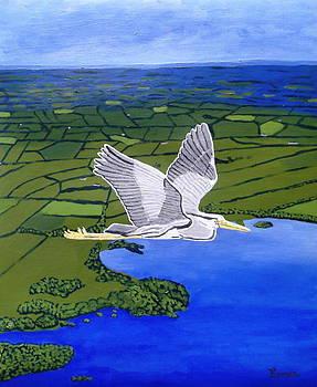 Gray Heron Flying over Lough Sheelin by Eamon Reilly