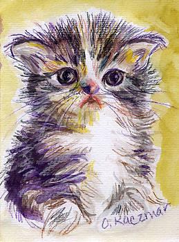 Olga Kaczmar - Gray Tabby Kitten