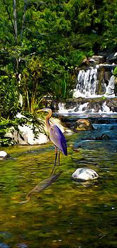 Great Blue Heron by Sotiri Catemis