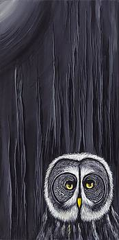 David Junod - Great Gray Owl