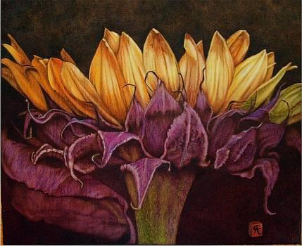 Great Sunflower by Cynthia Adams