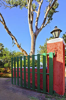 Kantilal Patel - Green Acres