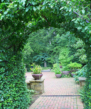 Green Archway by Valerie Longo