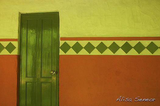 Green Door by Alisa Seneor