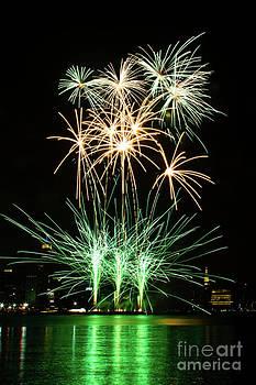 Green Fireworks by Archana Doddi