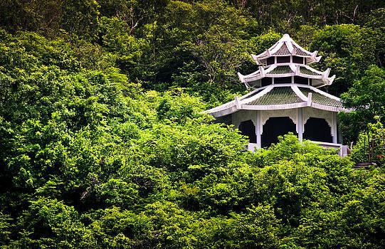 Green Hil by Sai Krishna Pratapagiri