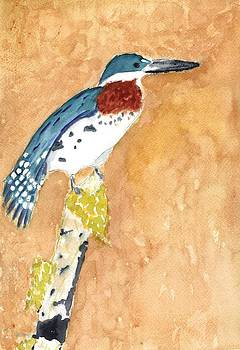 Green Kingfisher by David Crowell