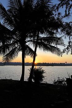 Kantilal Patel - Green Lagoon Sun