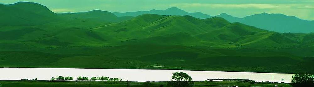 Green Meadows Lake by Aliesha Fisher