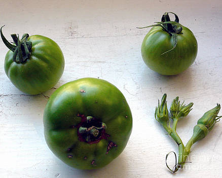 Green Tomatoes with Reclining Okra by Selwa Baroody