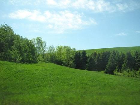 Greener Pastures by Harry Wojahn
