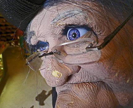 Greeting Granny by Seth Shotwell