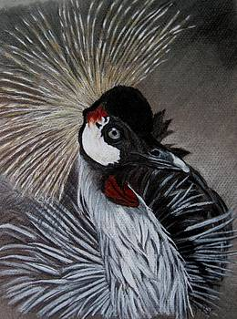 Joan Pye - Grey Crested Crane