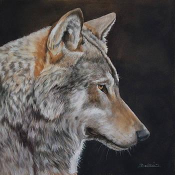 Grey Wolf by Bev Lewis