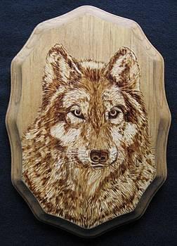 Grey Wolf by Bob Renaud