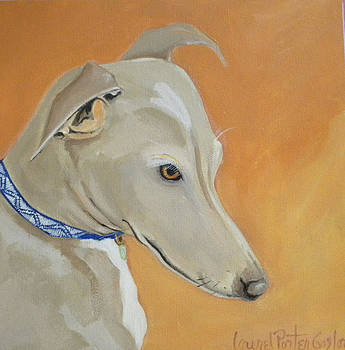 Greyhound Grace by Laurel Porter-Gaylord