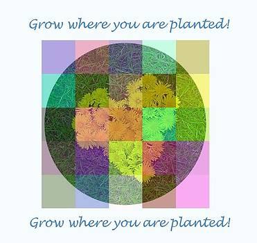 Grow by Gunvi Sund