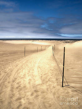 Gregory Dyer - Guadalupe Dunes - 01
