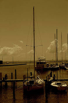 Nina Fosdick - Gulf of Memories