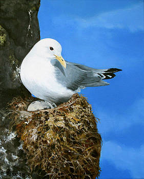 Gull and Her Nest by Donna Francis