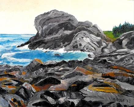 Gull Rock Monhegan Maine by Jack Riddle