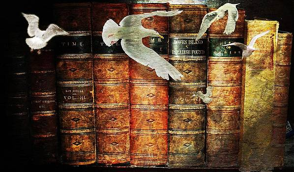 Gulls and Books by Janet Kearns
