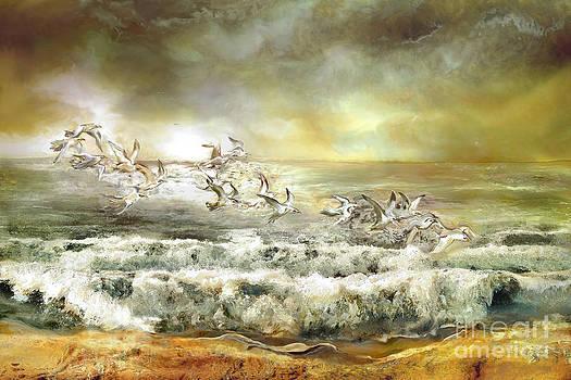 Gulls on the sea by Anne Weirich