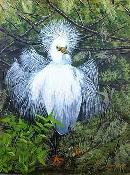 H. Egret by Jan Fink