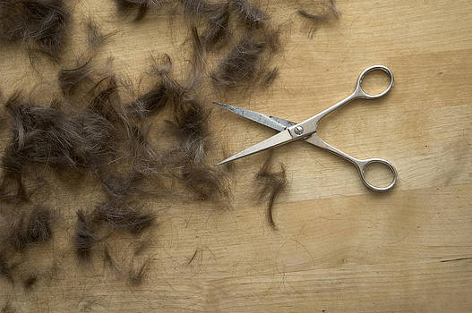 Hair and scissors on table by Matthias Hauser