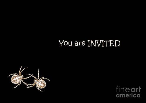 Halloween Greetings. Spider Party Series #02 by Ausra Huntington nee Paulauskaite