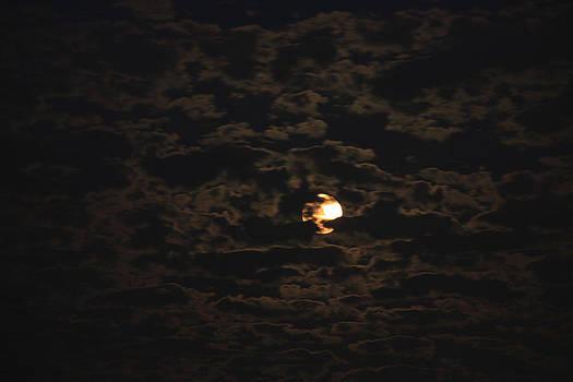 Halloween Moon by Ann Marie Donahue